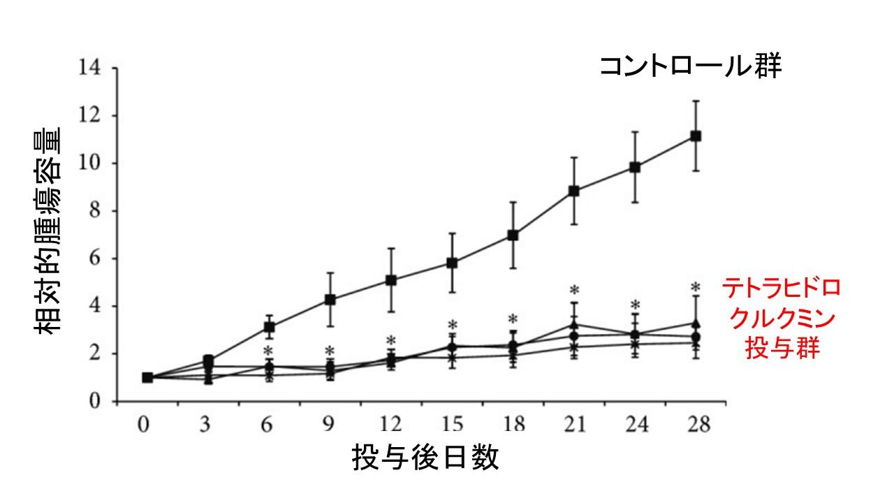 テトラヒドロクルクミン ヌードマウス実験