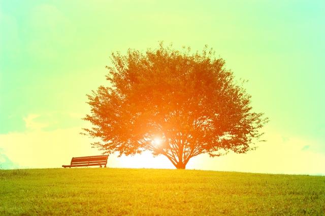 「がんと闘う」よりも「前向きに生きる」すすめ:「がんが自然に治る生き方」より