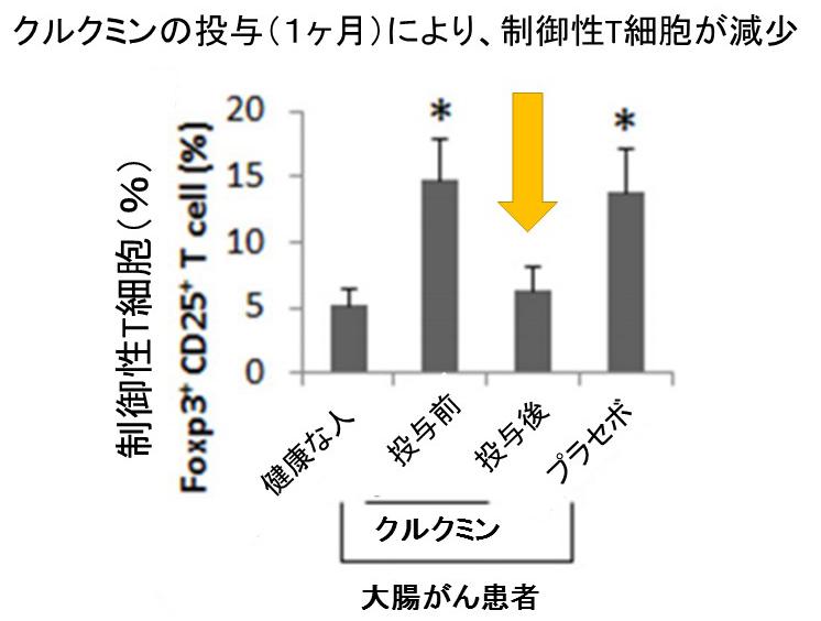 クルクミン制御性T細胞減少