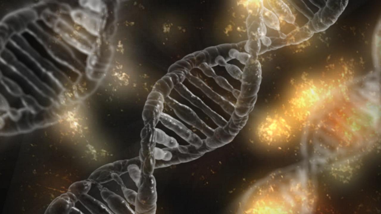 遺伝子異常(ミスマッチ修復機構欠損)により抗PD-1抗体(ペンブロリズマブ)が効く癌を予測