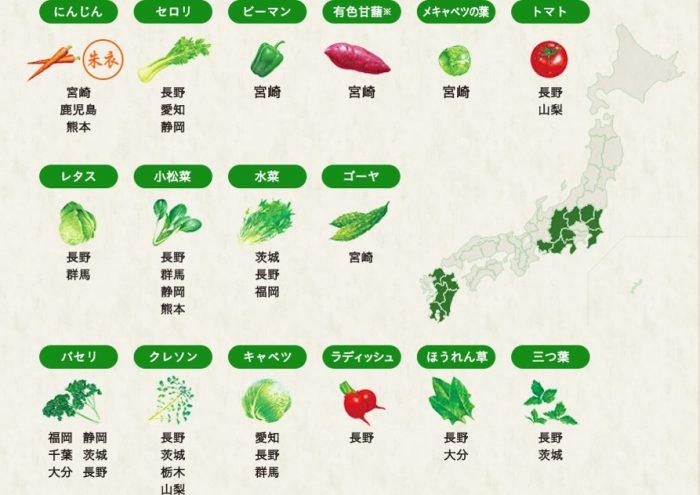 伊藤園野菜ジュース原料