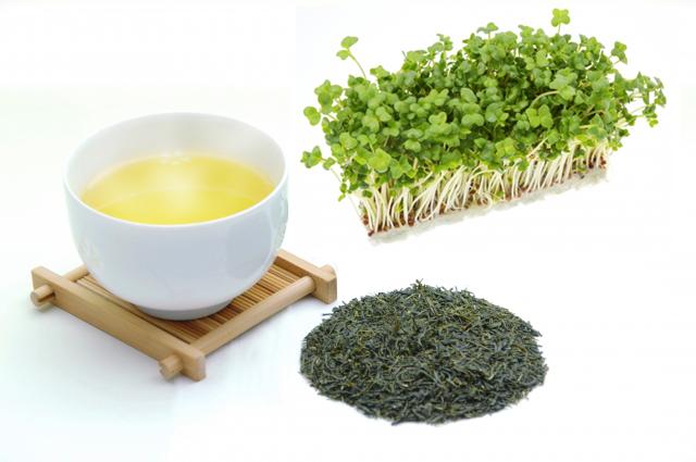 緑茶とブロッコリースプラウト