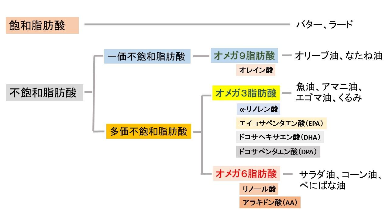 脂肪酸分類