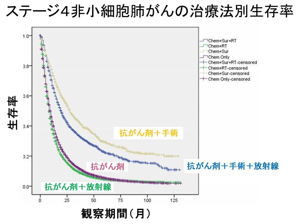 肺がん治療法別生存率