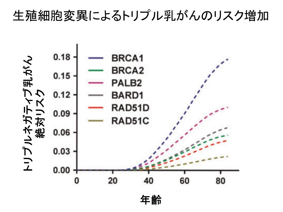 トリプルネガティブ乳がん遺伝子リスク